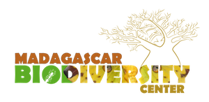 Madagascar Biodiversity Center